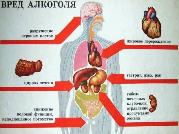 Що пити при зниженому тиску: аптечні і народні засоби